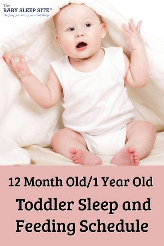 12 Month Old / 1 Year Old Toddler Sleep and Feeding Schedule